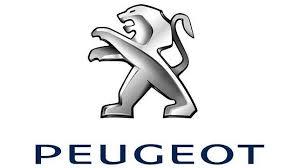 Peugeot busca jóvenes para el lanzamiento de su nuevo coche