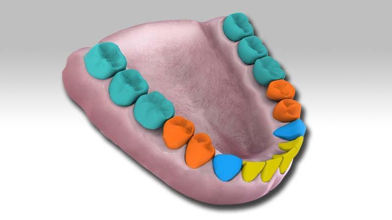 Cursos de CAD-CAM dental en la Escuela Pejoan