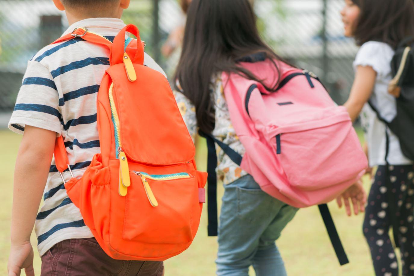 Fichas educativas gratuitas para trabajar en el hogar o en las clases