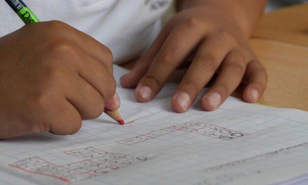 ¿Son necesarias las clases de apoyo para nuestros hijos?